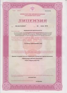 Лицензии0001