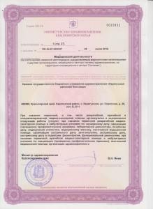 Лицензии0029